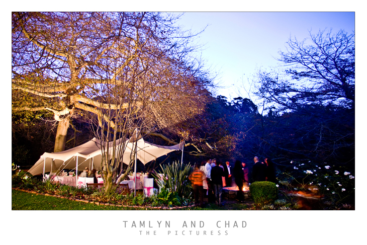 Tamlyn and Chad's Wedding