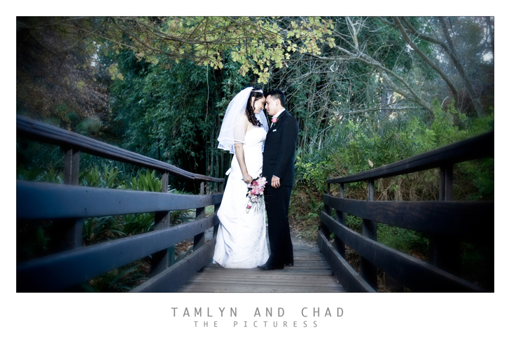 Wedding Photography at Little Stream