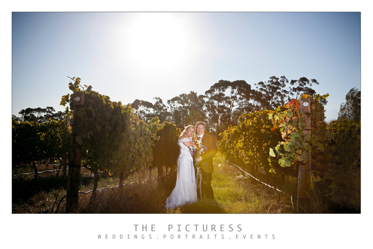 Stellenbosch Wedding Photos