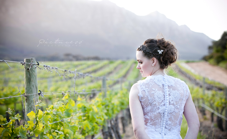 Cape Town Wedding Photos016