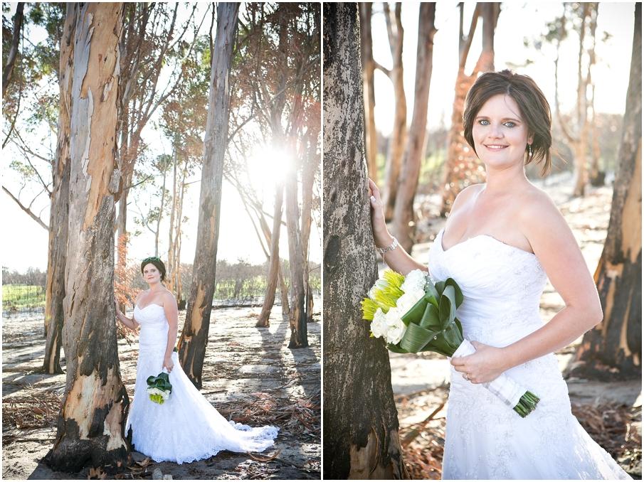 CT Wedding Photos010