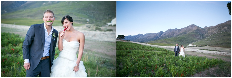 Cape Town Wedding Photographer034