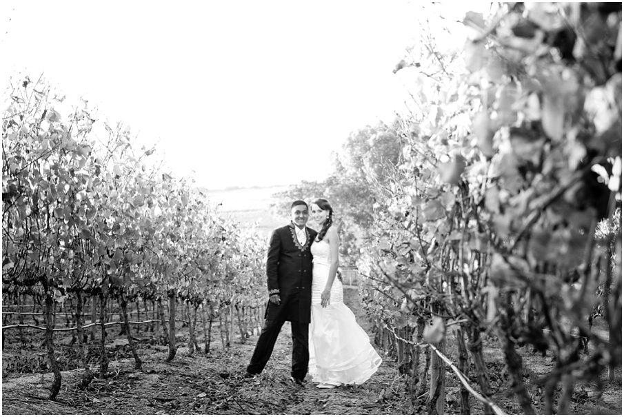Neethlingshof Wedding027