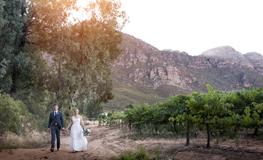 Colleen & Ben – Wedding Photos at Allesverloren
